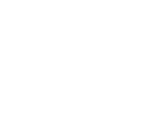 Pierrick FINE